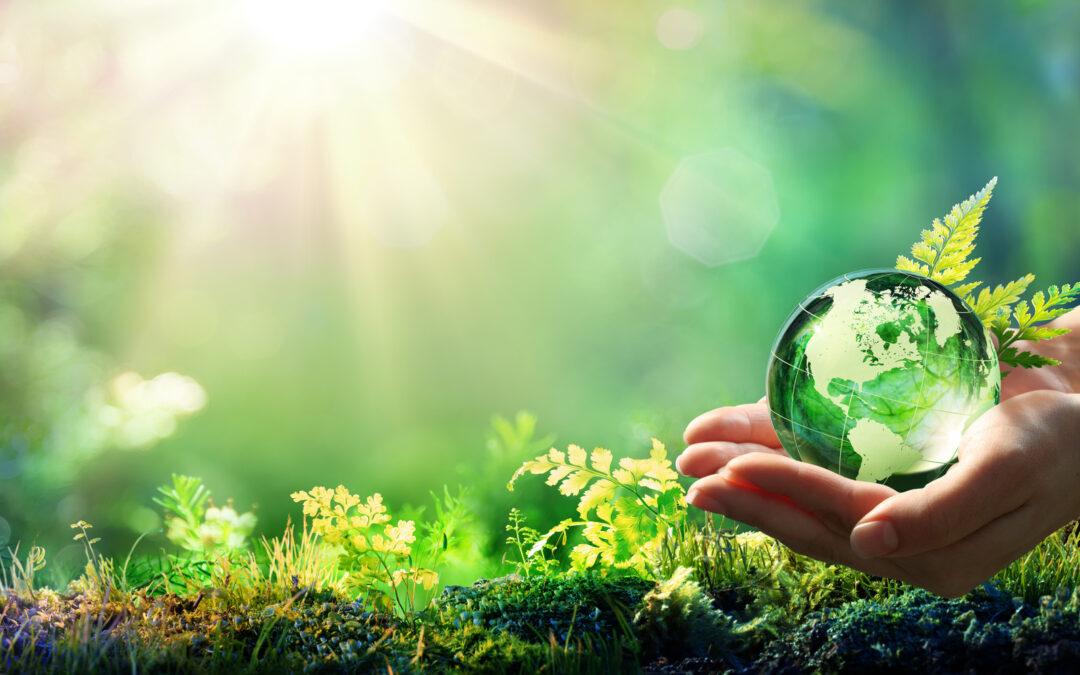 Soluzioni green per stampanti e multifunzione